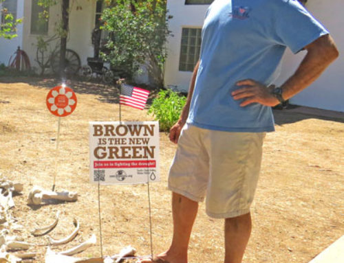 Around Town … with Robert Airoldi: City enacts new restrictions limiting watering to one day only