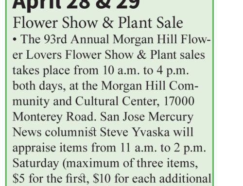 Calendar of Events: Published in the April 24 – May 7, 2019 issue of Morgan Hill Life