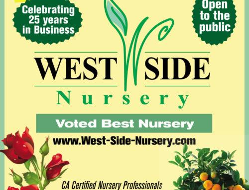 West Side Nursery