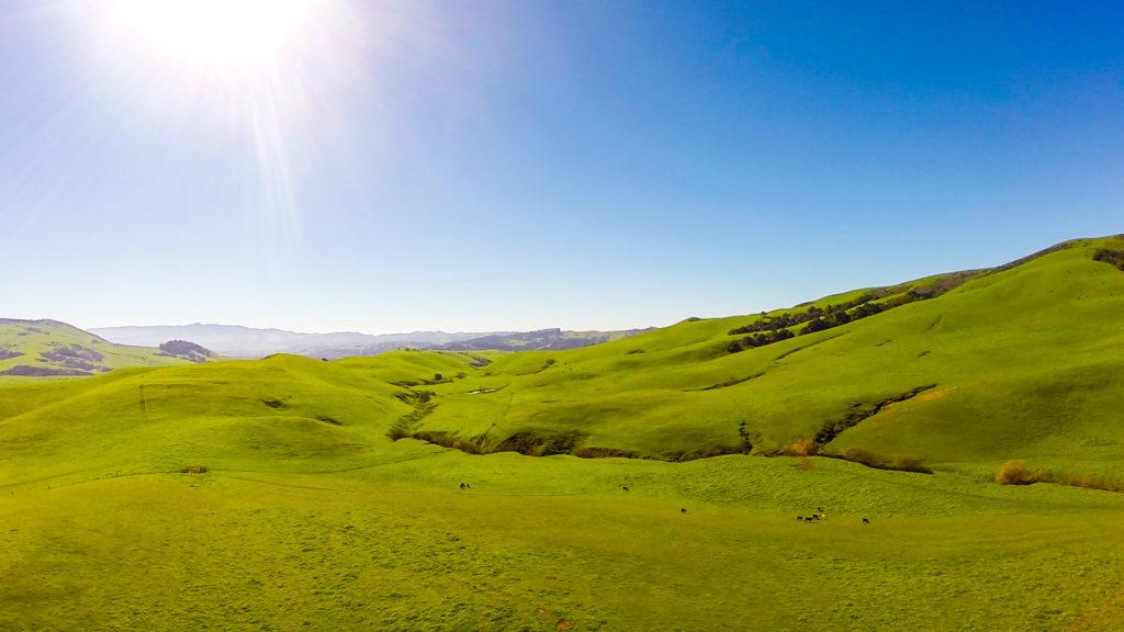 Image result for Sargent Ranch