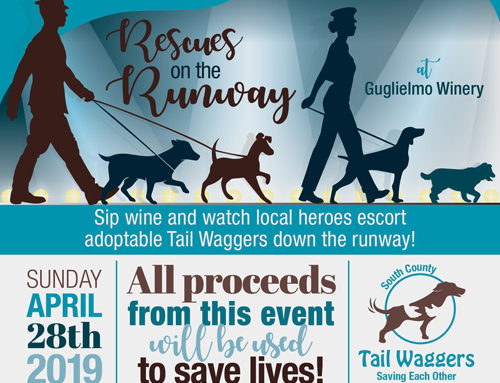 April 28: 3rd Annual Wag 'n Wine fundraiser for South County Tail Waggers