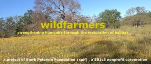Walk On The Wild Side...a day in the field with Ryan O'Dell and Amelia Ryan @ wildfarmers | Paicines | California | United States
