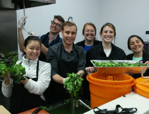 Nonprofit profile: Loaves & Fishes feeds hungry from MH kitchens