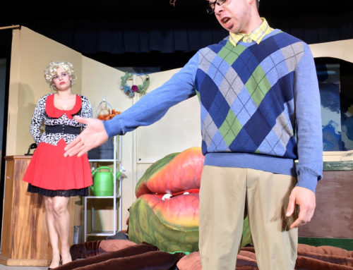 Pintello Comedy Theater provide carnivorous laughs with 'Little Shop of Horrors'