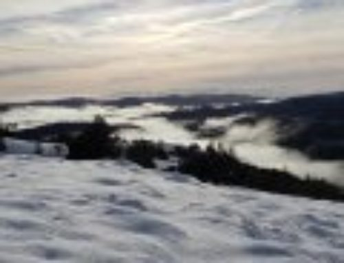 Enjoy photos of snow at Henry W. Coe State Park — January 2020
