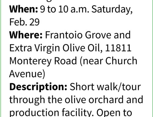 Take a Hike  … with Mike Monroe: Learn how olive oil is locally produced on tour of San Martin grove