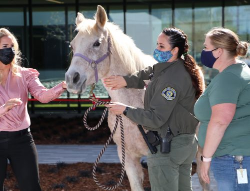 Main story: New world-class Animal Services Center opens in San Martin