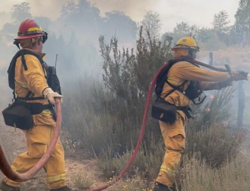 Gilroy firefighters deployed to battle Northern California blazes