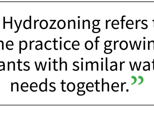 Your Garden … with Kate Russell: Plant your garden according to watering needs, known as hydrozoning