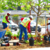 Lead story: Drought-tolerant landscaping, irrigation part of city upgrades